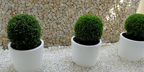 Pedras Decorativas para Jardins